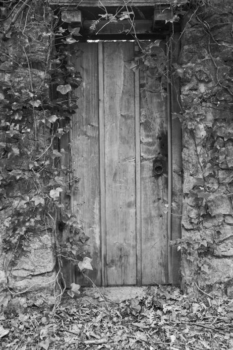 Image 59 Door in Weston Woods