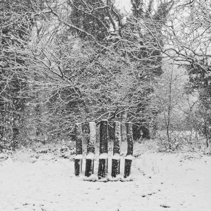 Image 61 Sculpture in Snow Weston woods