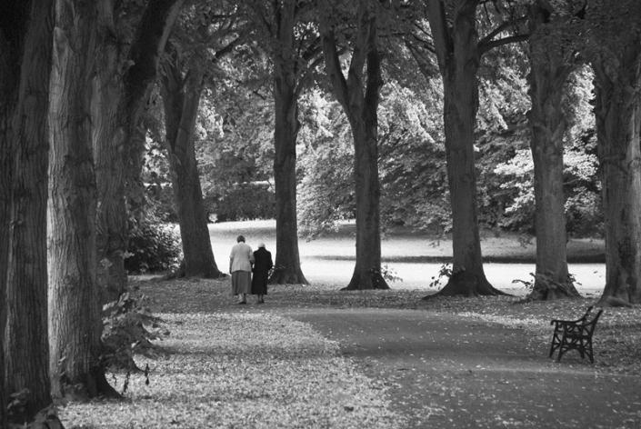 Image 7 Avenue Ashcombe Park