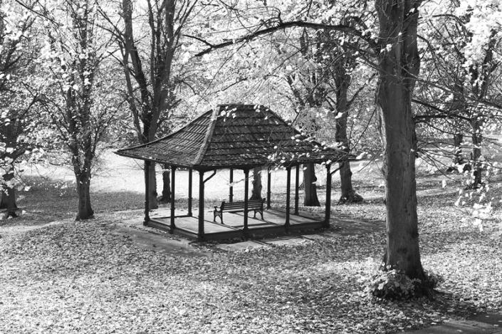 Image 8 Shelter Ashcombe Park
