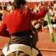 Bullfight Cruelty for Kicks